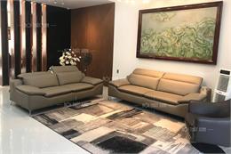 Mẫu ghế sofa phòng khách H2069-VD-BR